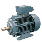 Купить 1PS1113-1BF..-3AA2 (1PS11131BF..3AA2) LOW-VOLTG. SQUIRREL-CAGE MOTOR LOHER TYPE: ANLK-112MB-02 CONVERTER FEED, STANDARD INSUL. STANDARD ROTOR, EXT. COOLED EX NA II T3 IP55, IC416, SIZE 112, IE2 2 POLE 4 KW AT 50HZ